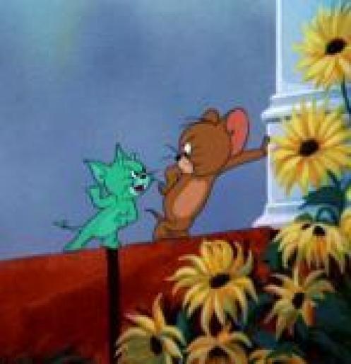 Tom&Jerry. WDDPVLYBKAGQSKFEDXF