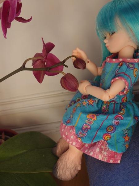 Commissions couture ----> Boutique Lilli Bellule <---- Orchid8