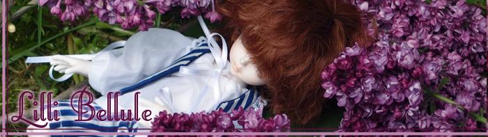 Commissions couture ----> Boutique Lilli Bellule <---- Ban