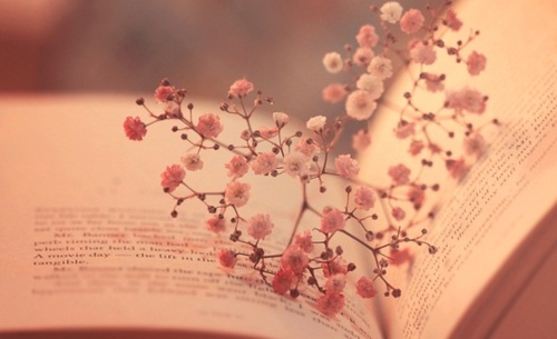 LIBROS = A SABIDURIA , CONOCIMIENTOS ..... - Página 3 Books-flowers-hearts-open-book-favim-com-621002