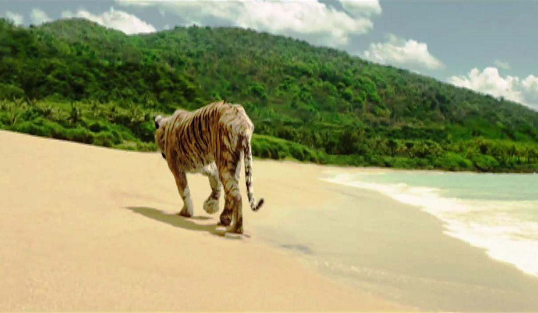 preguntas sobre una aventura extraordinaria!.. Life-of-pi_richard-parker-walks-away