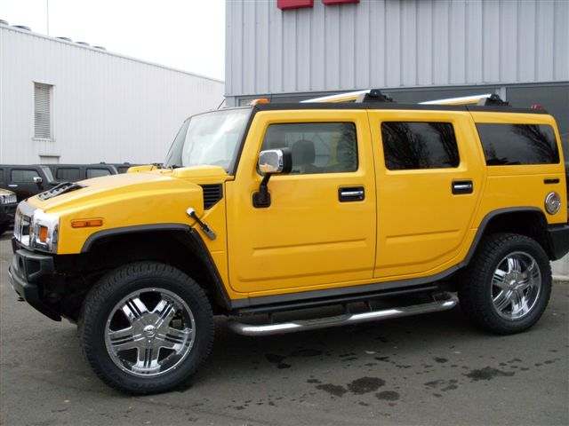 mon second hummer  Sdc10085