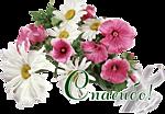 Поздравляем с Днем Рождения Ольгу (Oleyka) 989029379