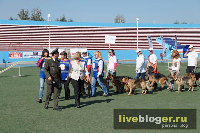 7- 8 сентября  фестиваль собак всех пород в г.Новосибирск Festival-vseh-porod-2013-41