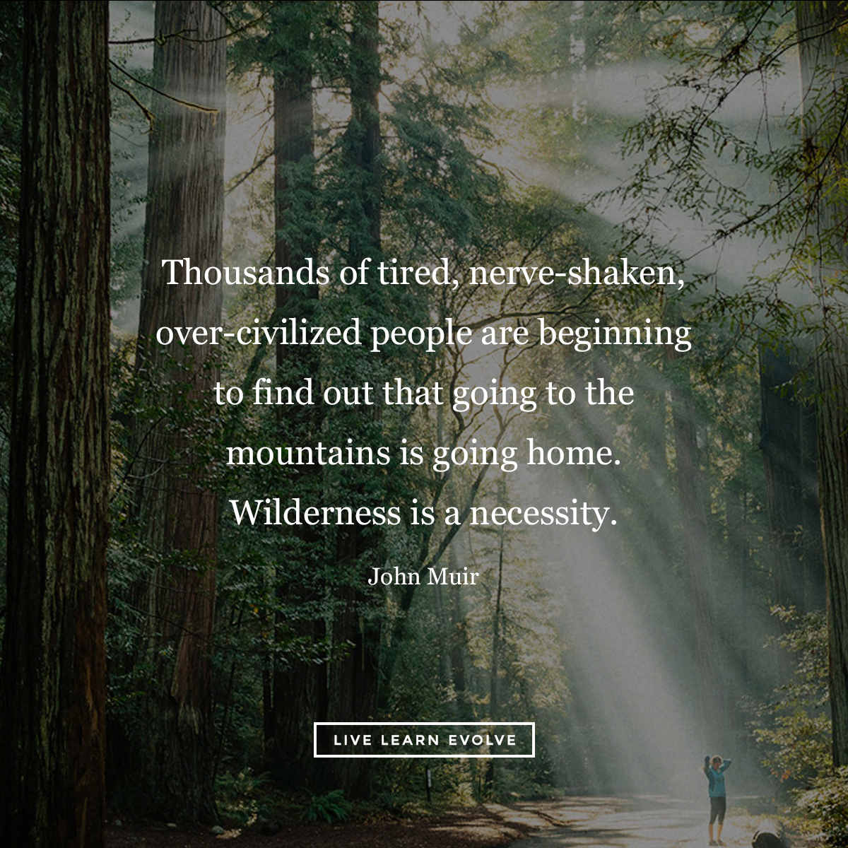 Microdosing Nature: The Science behind the Healing Powers of the Natural World  John_muir_wilderness_forest_bathing