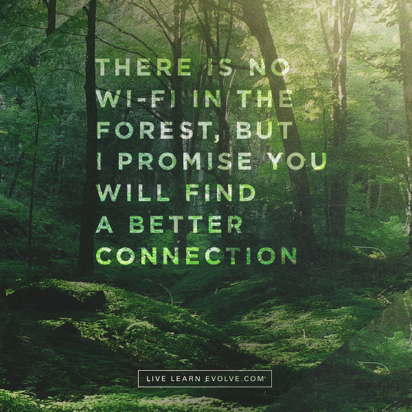 Microdosing Nature: The Science behind the Healing Powers of the Natural World  Wifi-forests-better-connection-v3