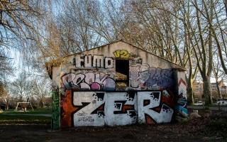 22/02/2019 - Pech_les oies est Photo du jour! 2019_02_22__320_38