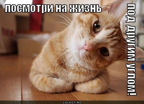Елена Ильиных-Руслан Жиганшин - 5 - Страница 6 Pod-drugim-uglom_1326045272