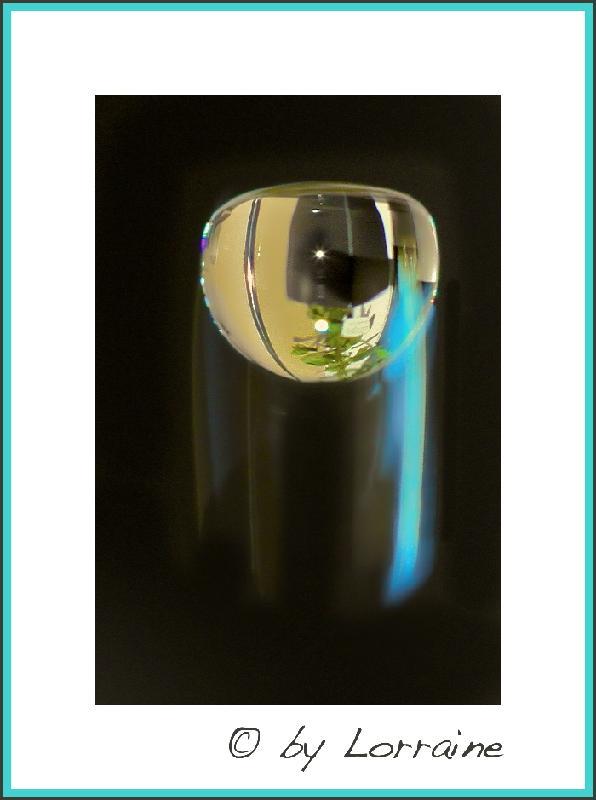 Versuche der Makrofotografie... - Seite 3 IMG_8024-16092012%20(1)