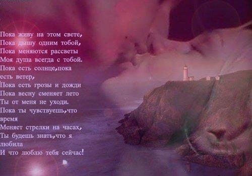Кара волка - Страница 6 231