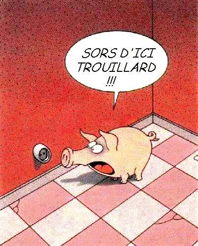 Images humoristiques.... - Page 2 Animaux15