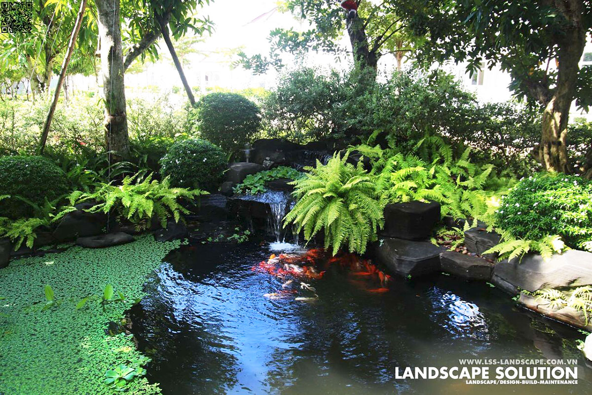 6 Phong Cách Thiết Kế Hồ Cá Koi Đẹp Nhất Cho Sân Vườn Biệt Thự 2019 6-phong-cach-thiet-ke-ho-ca-Koi-dep-nhat-cho-san-vuon-biet-thu-(7)
