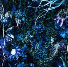 Nouvel album LUNA SEA «CROSS» - 18-12-19 - Page 2 26%202017%2010%20%20sgz%20oneness%20m