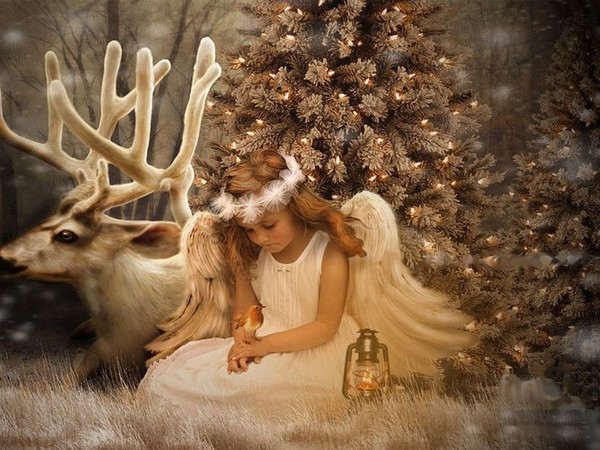 Last Christmas D1e46472