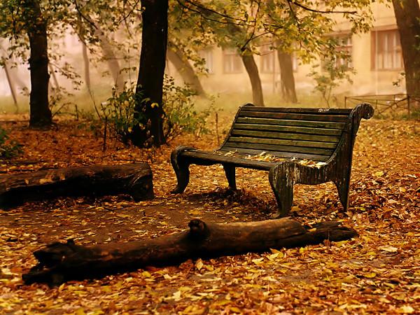 Pensées d'automne (2) - Marius LAUGIER Dab5d09c