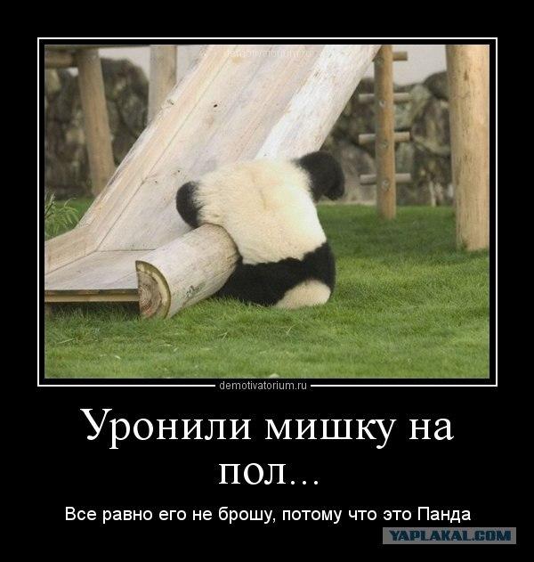 УГАДАЙ ПСИХИЧЕСКУЮ! 2 - Страница 3 Panda1