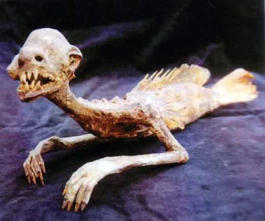 Antiques et curiosités Mermaidinjapan
