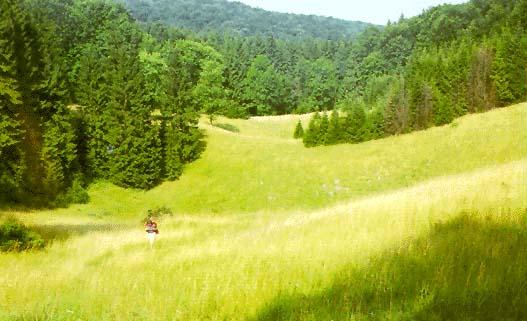 Déli-dombság Image117jpg