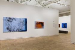 Newsletter Art Absolument : les expositions à voir absolument ! Hartung