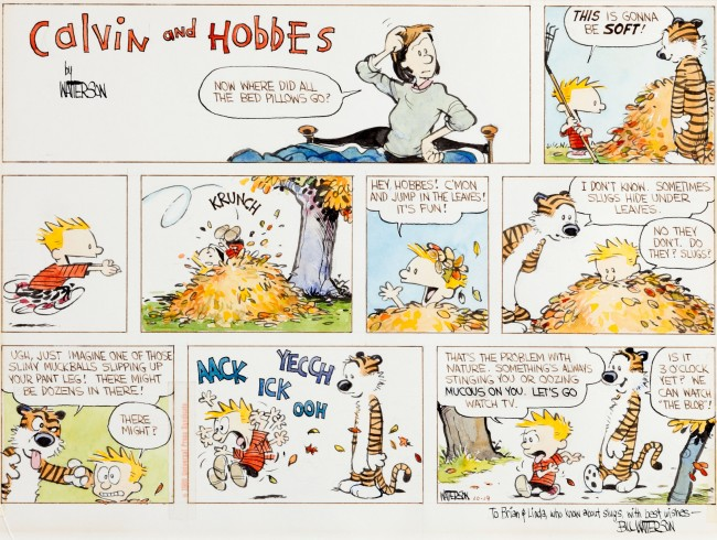 Kalvin i Hobs - Page 2 Calvin-and-Hobbes-strip-650x490