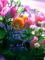 Аватары с цветами Thumbs_vesennie-cvety-2