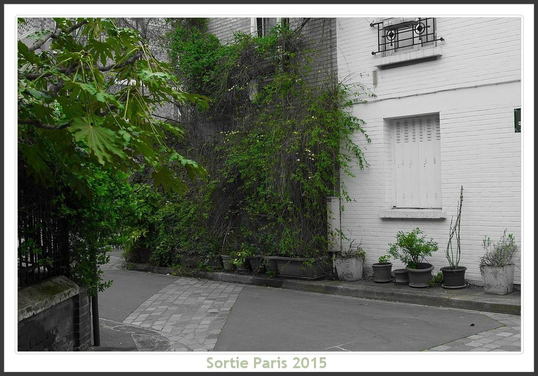 Sortie ANNIVERSAIRE 2015 PARIS 1I AVRIL. - Page 2 Paris_KparK_2015_07