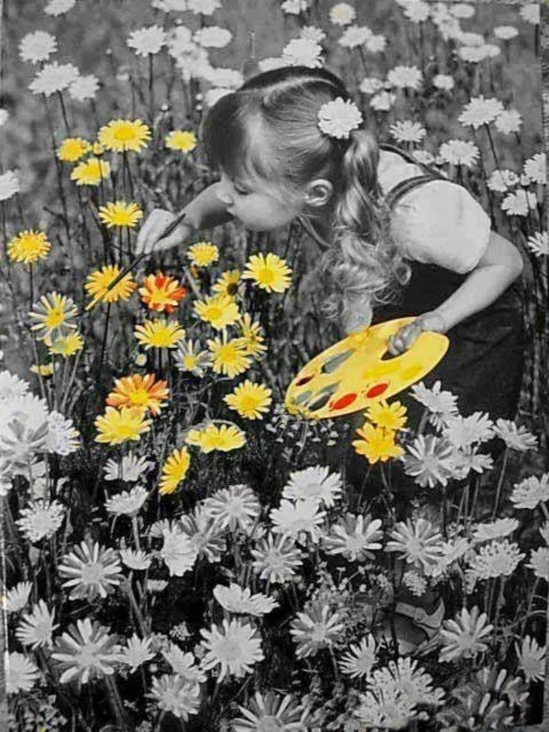 jeudi 31 mai Flowers_2