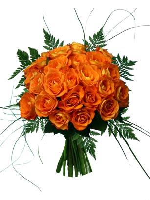 سجل حظورك بنكته Orange-roses-galore_zoom-copy