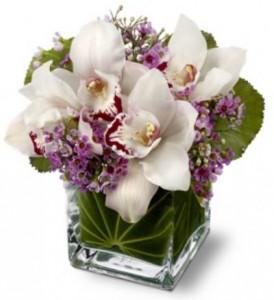 Дні народження наших форумчанок - Страница 6 OrchidLove-274x300