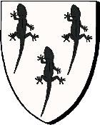 Lézard / glazard Cotereau-de-Maintenon