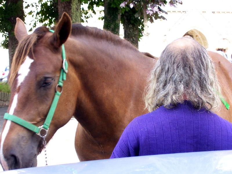 Le lexique du cheval Fest-naous-jeux-crinieres-1