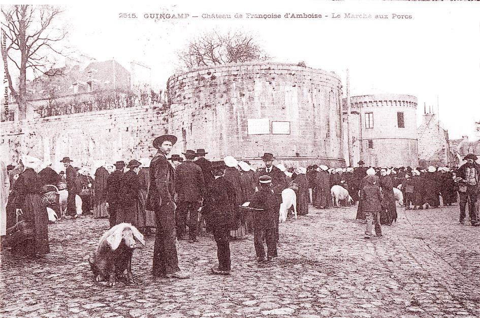 Les cochons, les porcs / Ar moc'h Guingamp-cp-marche-cochons