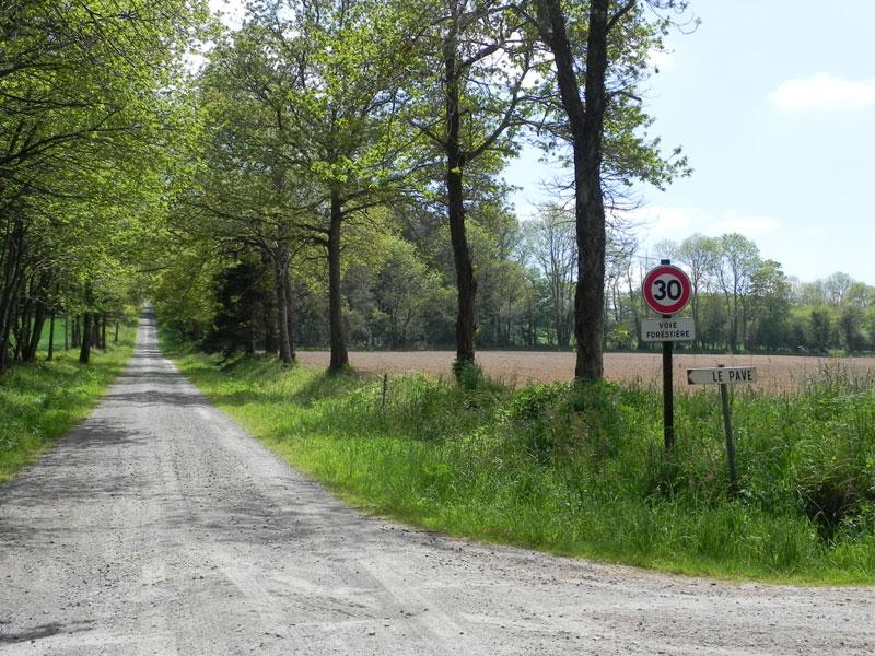 Toponymie associée aux voies romaines Vr-pavez1461