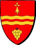 MAISDON-la-Rivière * MAEDON * MAEZON-ar-Gwini Blason