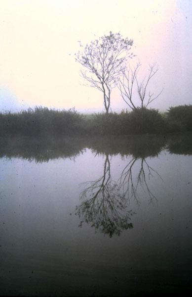 Les reflets / An adskejoù Reflets-40_003