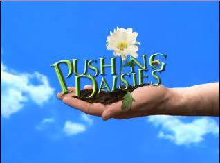 Votre Flim du Mois de Juin 2010 Pushing_daisies_logo