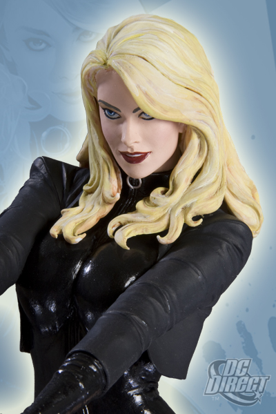COVER GIRL OF THE DC UNIVERSE : BLACK CANARY 11976_b_full