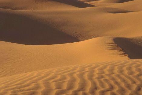 Tom Petty masturbandose al viento Desierto
