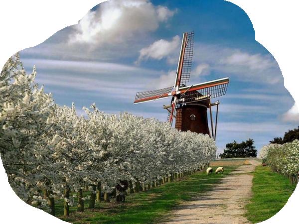 Moulins à vent, moulins à eau  F3538c02