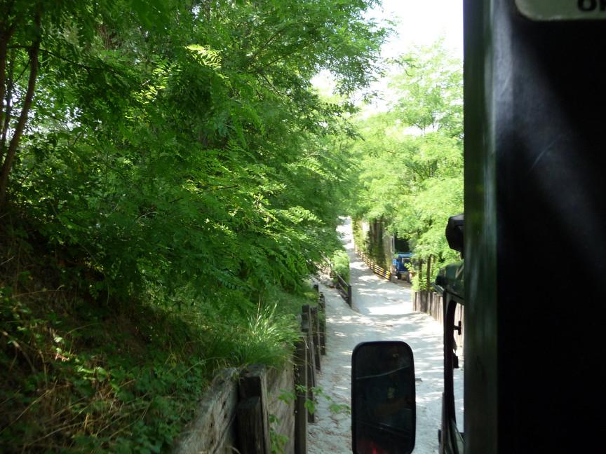[Trip Report] Parcs italiens (juillet 2009) 67