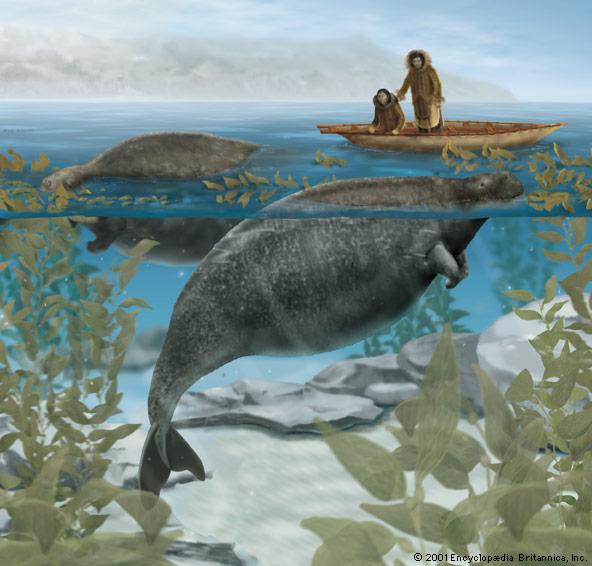Las especies de animales que los científicos quieren 'resucitar' 67394-004-903736D1