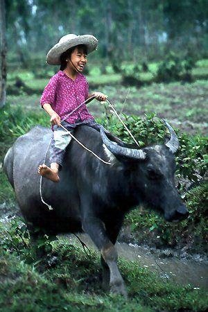 Vijetnam 1324170545cb13280f89f5f5dd55a1df