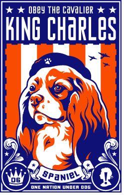 Le Cavalier King Charles Spaniel 303f770fb010ef4e8c750dcea7bcca85