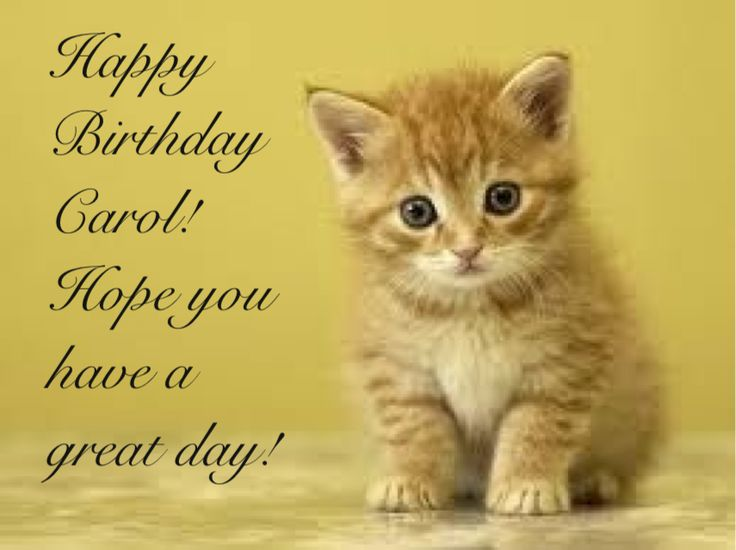 ♪♫♪Happy Birthday to Carol!♪♫♪ 6bea3ec3c7754f15926ef3bb8fe74333