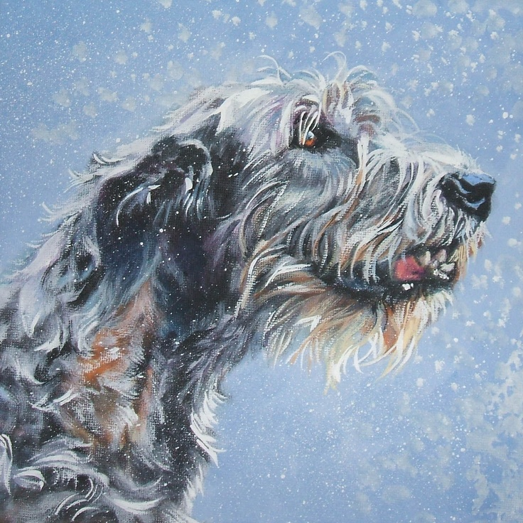 L'Irish Wolfhound 3c7d9d20507374b1b28b5d1816c570db