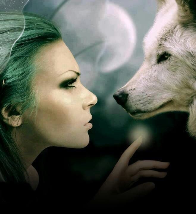 woman and wolf 6a28e4b5af3cded462122d888b2b416d