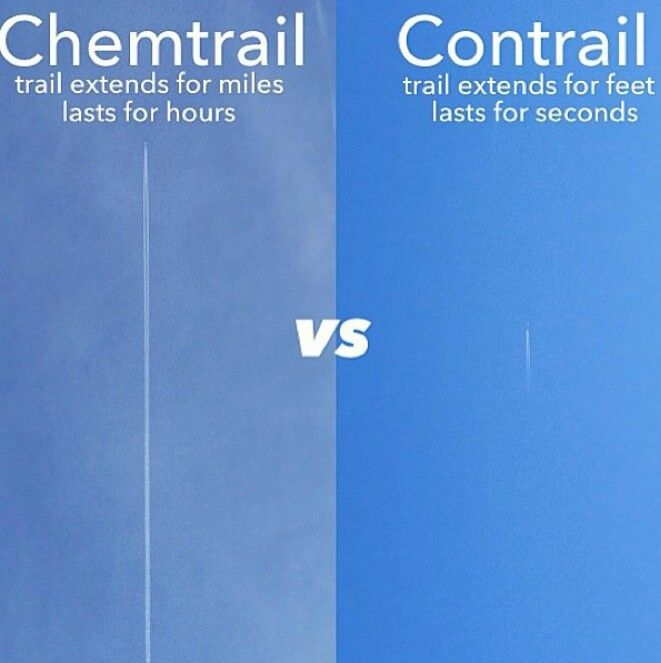 Geo-Engineers Want More Chemtrails To Save the Coral 650e9f480b86e56c3859828dbc461f01