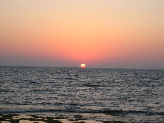 காஃபி, தேநீர் - இரண்டில் எது நல்லது? - Page 3 Early-evening-sunset
