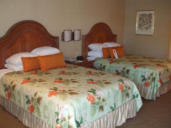 hotels californie disney anaheim Room