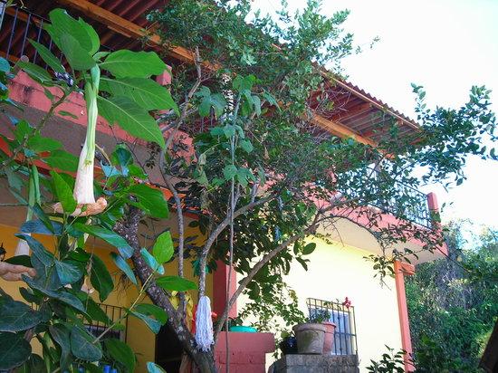 Meksiko - Page 3 Casa-irma-y-angel